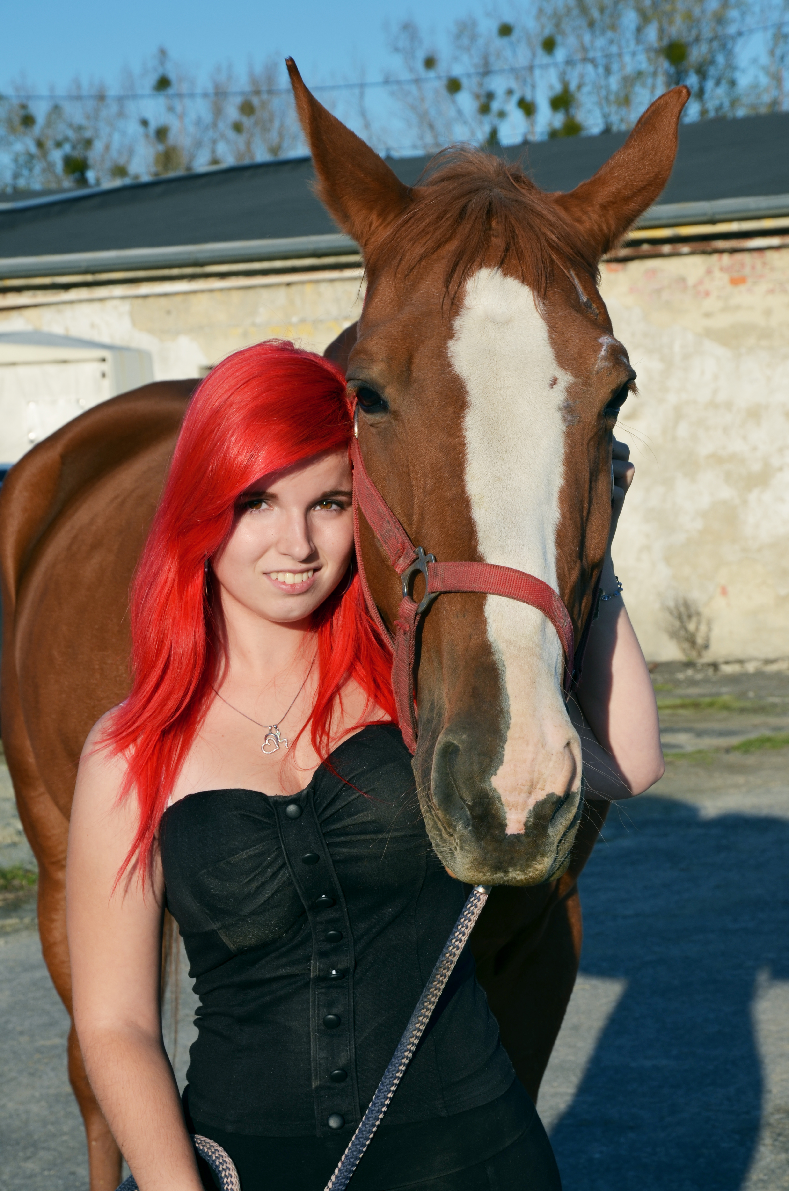 Focení Domča, u koní